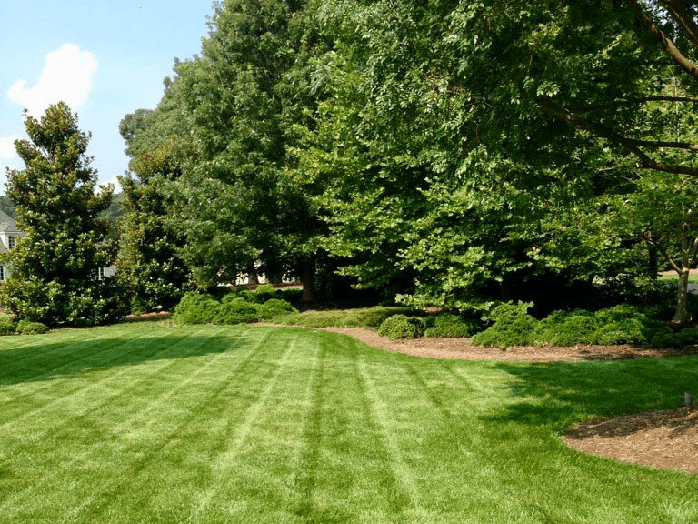 Request for Proposals for Landscaping/Lawn Services